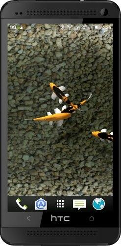 Koi Live Wallpaper 1.9 - живые обои для android