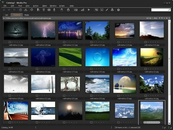 Phase One Media Pro SE 2.2.0.247 + crack [Русификатор]