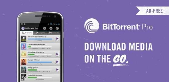 BitTorrent® Pro 3.14 [На русском]