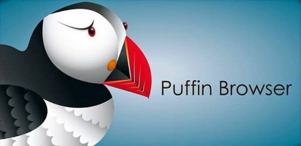 Puffin Browser Pro 4.7.3.2441 [На русском]