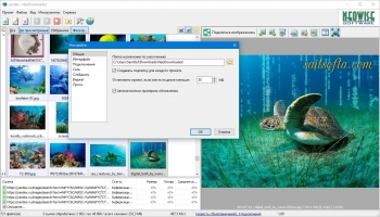 NeoDownloader 3.0.3 Build 209 + patch [Русские/Английские версии]