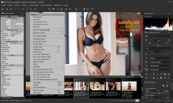 SILKYPIX Developer Studio Pro 8.0.24.0 + cracked [Русификатор]
