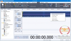 AVS Audio Editor 9.0.1.530 + patch [На русском]