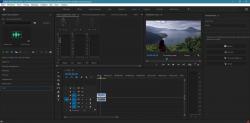 Adobe Premiere Pro 2021 15.1.0.48 + crack [На русском]